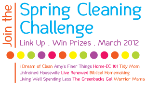 Spring Cleaning Challenge {With Big Prizes!}