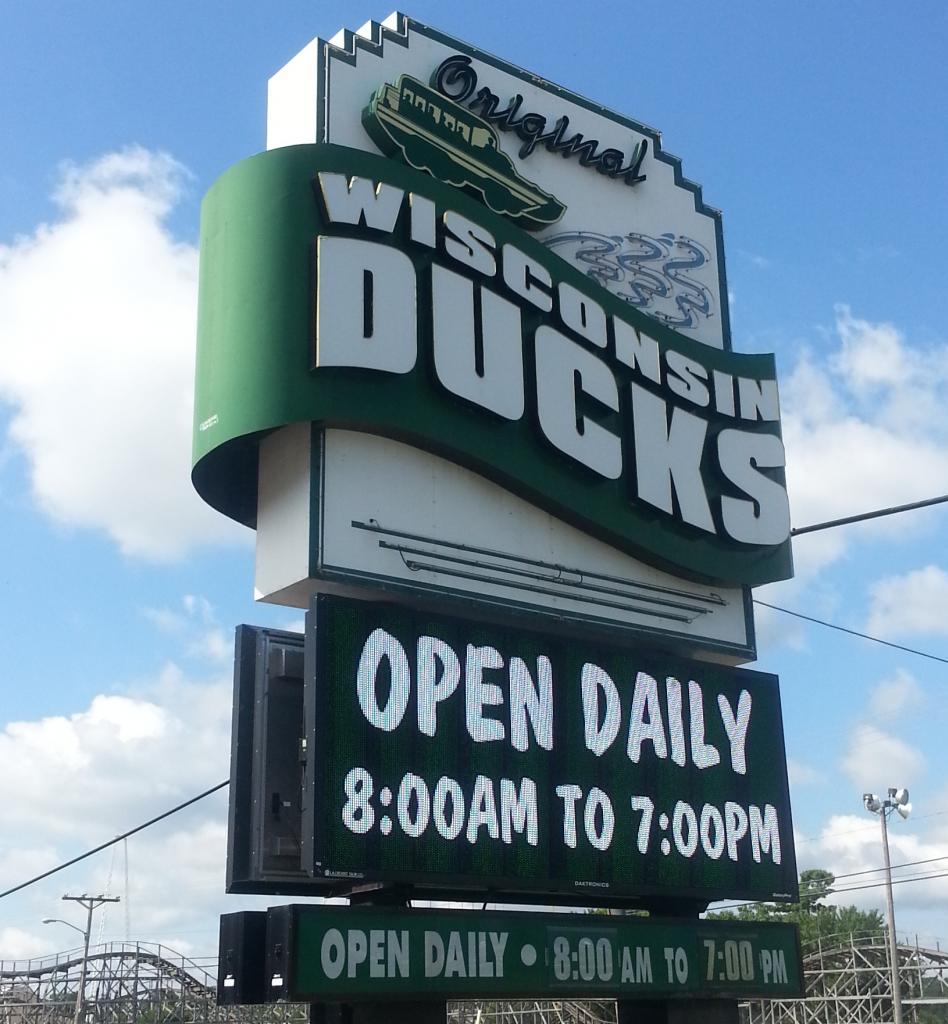 ducks 7