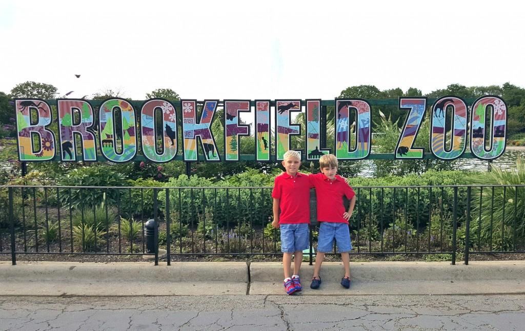 Making Memories At Brookfield Zoo