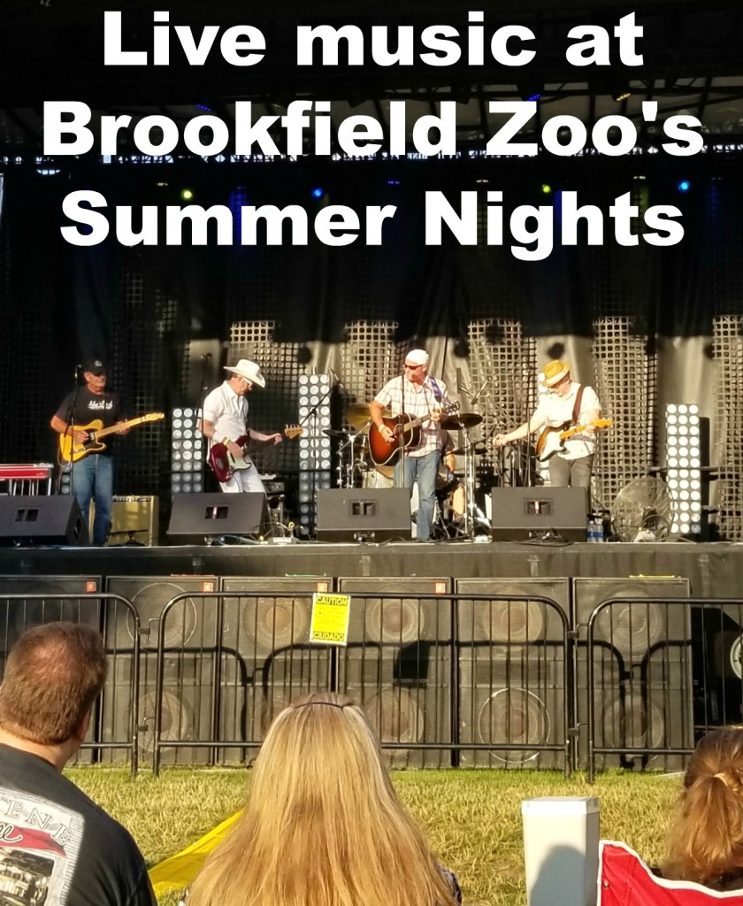 Live Music And More At Brookfield Zoo's Summer Nights