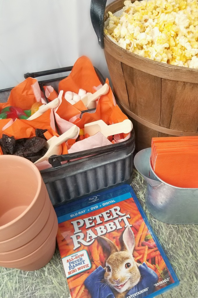 Peter Rabbit Family Movie Night With A Mr Mcgregor S