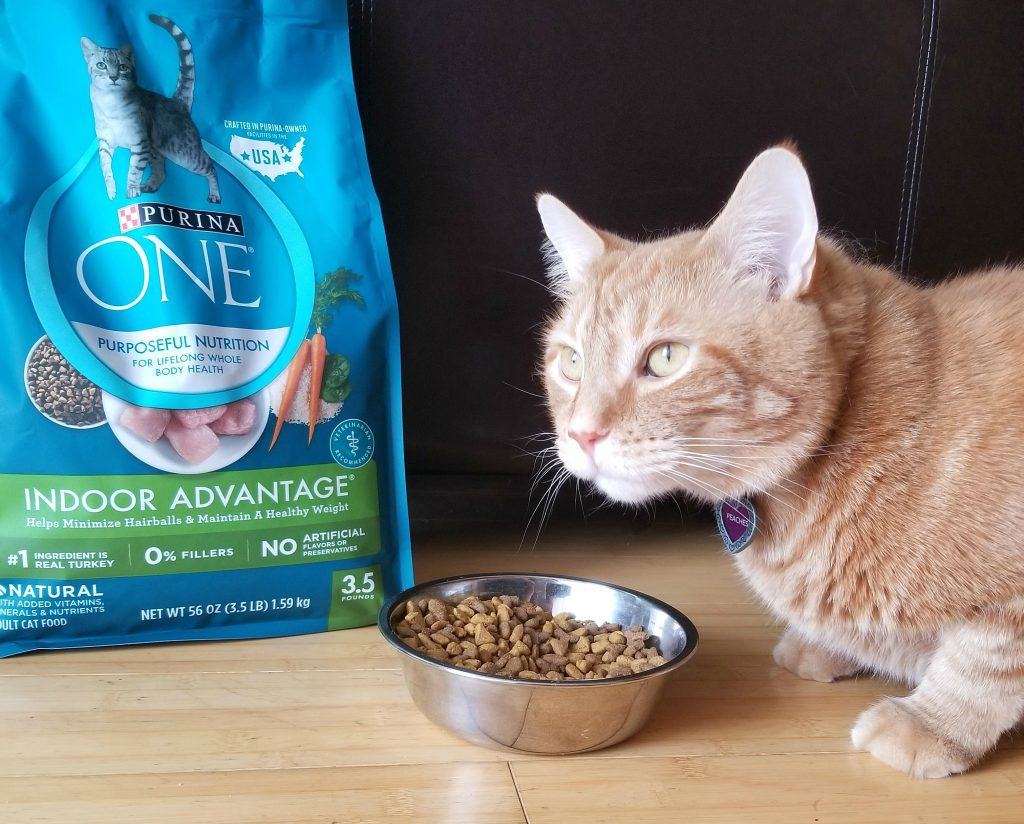 The Purina ONE® 28-Day Challenge